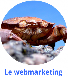 hubert carlier communication damgan vannes le webmarketing